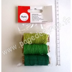 RAYHER KIT CORDONS DE CHANVRE 1mm TONS VERTS