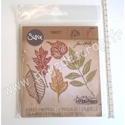 SIZZIX TIM HOLTZ THINLITS DIE SET x5  SKELETON LEAVES