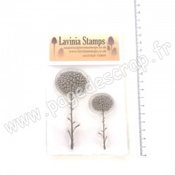 LAVINIA TAMPON CLEAR GLOW FLOWERS