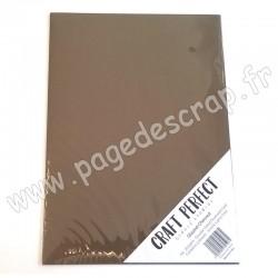 TONIC STUDIOS CRAFT PERFECT PEARLESCENT CARD A4 x5 250g GLAZED CHESNUT