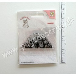 ANI022   NELLIE'S CHOICE TAMPONS CLEAR SPANIEL DOG