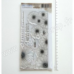 JOU135     CHOU & FLOWERS COLLECTION JOURNAL CHROMATIQUE TAMPONS CLEAR FRISE SÉRIE N.