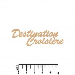 DESTINATION CROISIERE
