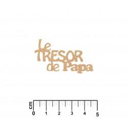 LE TRESOR DE PAPA